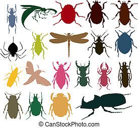 不同, 昆虫, colour., 插圖, 黑色半面畫像, 矢量
