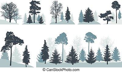 不同, 組, 橡木, 公園, 被隔离, 樹, 背景。, 矢量, 森林, (spruce, 松樹, etc.), 白色, 楓樹, 或者, illustration.