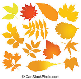 不同, 集合, 樹。, 離開, 插圖, 秋天, 矢量