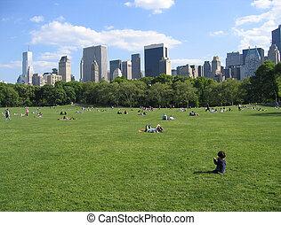 中央公園, ny