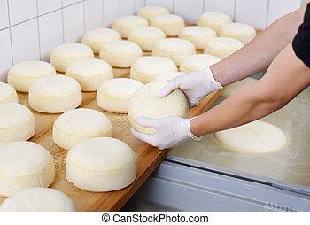 乳酪奶製品