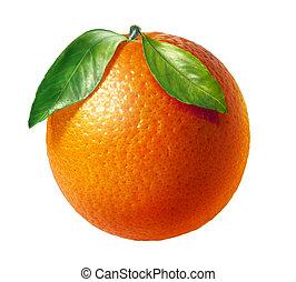 二, 離開, 背景。, 水果, 橙, 新鮮, 白色