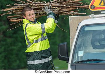 他的, 分支, 汽車, 樹, 放, 外科醫生