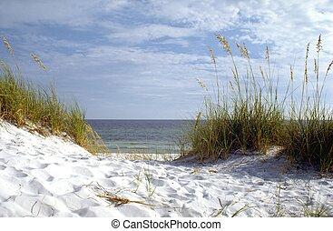 佛羅里達, 海灘