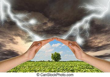 保護, 樹, 二, 針對, thunder-storm, 綠色, 手