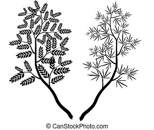 分支, 矢量, 樹, 彙整
