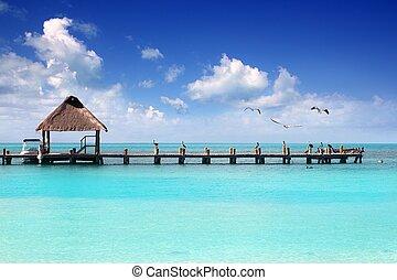 加勒比海海灘, 熱帶, contoy 島, 碼頭, 船艙