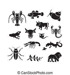 動物, 黑色半面畫像, -