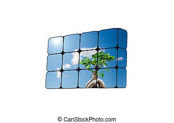 可持續, 立方, 成長, concept:, 手