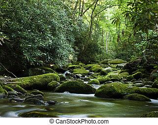 和平, 在上方, 河, 流動, 岩石