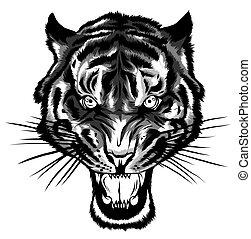 單色, tiger, anger., head., 插圖, 矢量