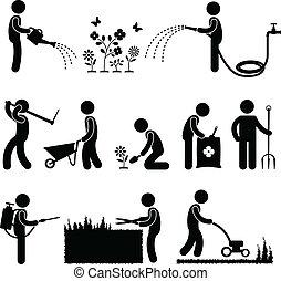 園藝, 工作, 工人, 園丁