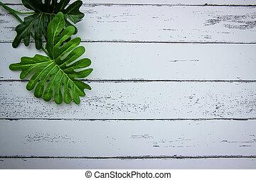 圖案, 白色, 木頭, 葉子, 背景。