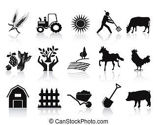 圖象, 黑色, 集合, 農場, 農業