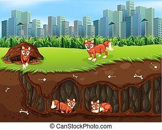 地鐵, 生活, 狐狸, 家庭
