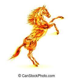 培養, 火, 馬, 向上。