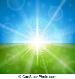 夏天, 明亮, 矢量, 太陽, 背景。