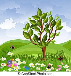 夏天, 樹, 年輕, 風景