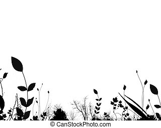 夏天, 邊框, 葉子