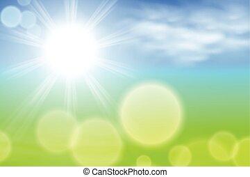 夏天, 陽光, 背景