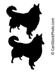 大牧羊犬, 黑色半面畫像, 矢量, 黑色, 莽漢, 狗