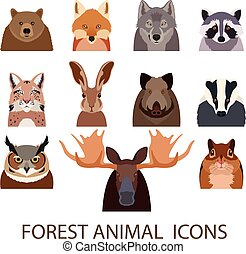 套間, 森林, 動物圖示