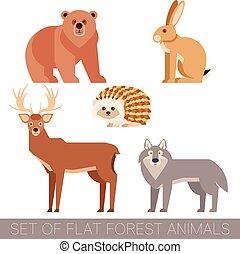 套間, 集合, 動物, 森林