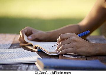 婦女, 人們, 學習, 大學, 年輕, 教育, 測試