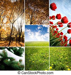 季節, 顏色