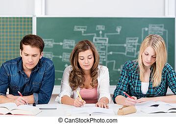 學生, 青少年, 工作, 努力, 三