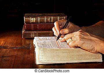 學習, 聖經, 神圣