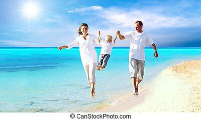 家庭, 年輕, 樂趣, 愉快, 海灘, 有, 看法