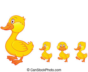 家庭, 鴨子