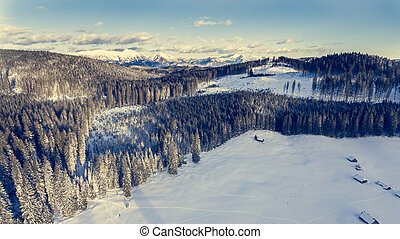 山, 空中, 冬天, forest., 上面, 看法
