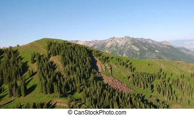 山, 空中, 形跡, 綠色的森林, 射擊