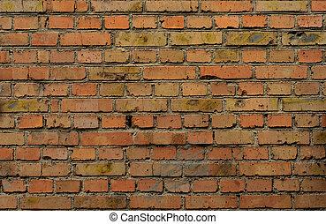 工業, 牆, 磚