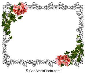 常春藤, 邀請, 邊框, 植物