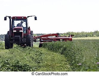 干草, 切, 拖拉机