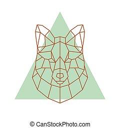 幾何學, 頭, fox.