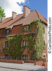 建築物, malbork, 老, 常春藤