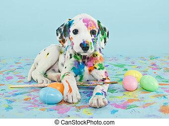 復活節, 小狗, dalmatain