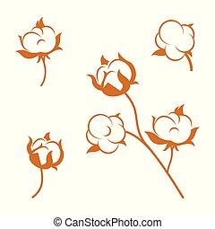 懷特花, 背景。, 棉花, 集合, 植物, 被隔离