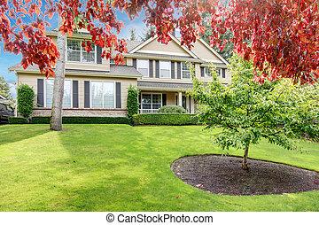 房子, 樹, 大, 綠色, 原色嗶嘰, 前面, 草