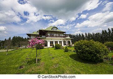 房子, 綠色, 花園