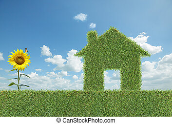 房子, 草, 綠色
