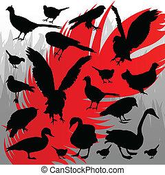 打獵, 插圖, 黑色半面畫像, 矢量, 森林, 背景, 鳥