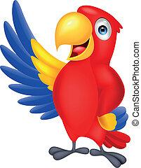 招手, 漂亮, 金剛鸚鵡, 鳥