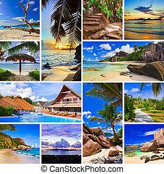 拼貼藝術, 夏天, 圖像, 海灘
