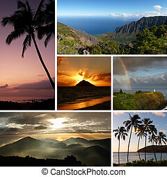 拼貼藝術, 相片, 复合, 夏威夷, 典型