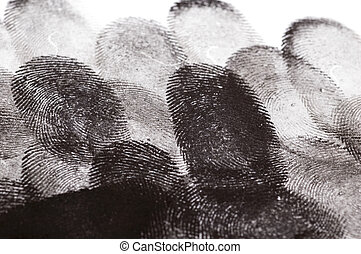 指紋, 复合